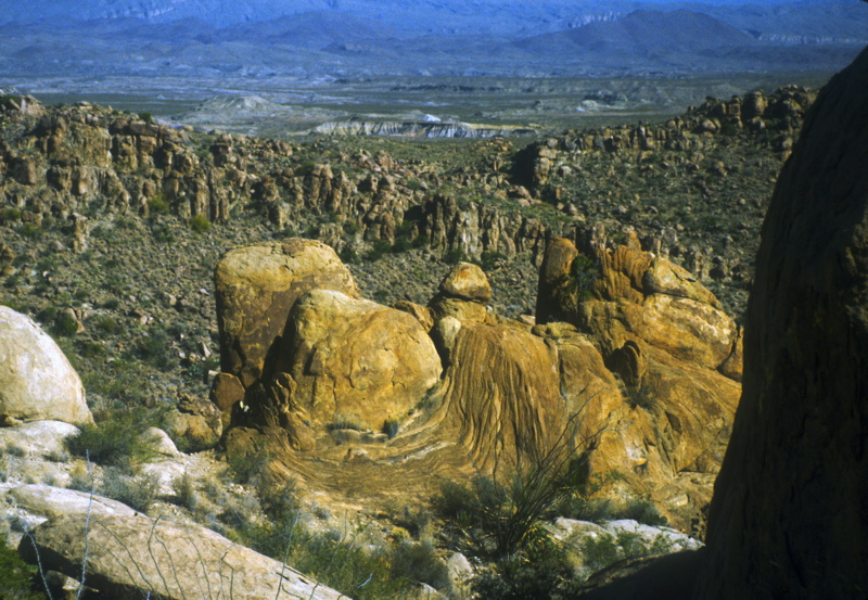 view from lost mine trail